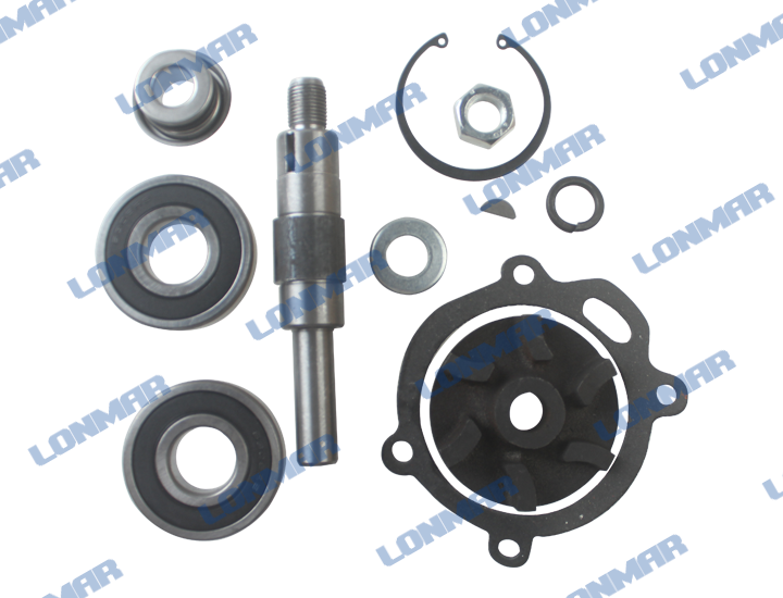 Water Pump Repair Kit Massey Ferguson Parts for Sale